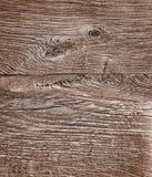 Tekstura drewno Obraz Stock