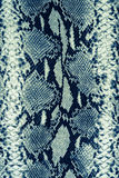 Tekstura druku węża tkanina paskująca skóra Zdjęcie Stock