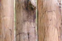 Tekstura drzewo ciemne drzewo Barwiony drzewo Obraz Stock