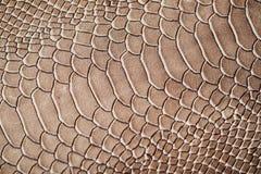 Tekstura egzotyczny prawdziwej skóry zakończenie, embossed pod skórą gada, tło zdjęcia royalty free