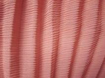 Tekstura i Projekt; Różowa Tkanina Obraz Royalty Free