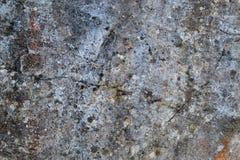 Tekstura 8842 - kamień Fotografia Royalty Free