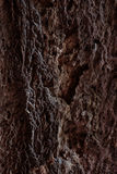 Tekstura kamień Obrazy Stock