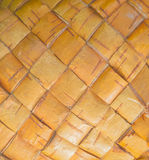 Tekstura korowatego drzewa brzoza, zbliżenie obrazy stock