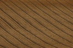 Tekstura kultywujący pole Obrazy Stock