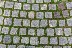 Tekstura kwadratowego kształta brukowe cegiełki Fotografia Royalty Free