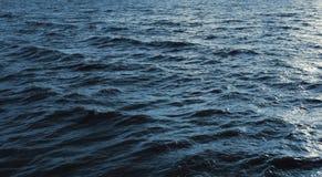 Tekstura lód, marznący wodny naturalny lód Zdjęcie Royalty Free