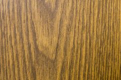 Tekstura laminat pod drzewem Fotografia Stock