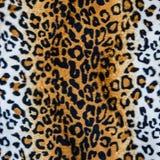Tekstura lampart skóra Obrazy Stock