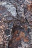 Tekstura mokry ciemnego brązu kamień z mech w górę skały, tło zdjęcie royalty free