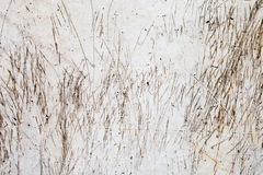Tekstura narysy i oceny na Jasnopopielatej betonowej ścianie zdjęcie stock