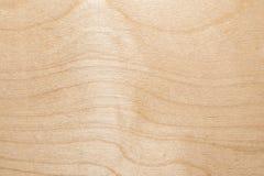 Tekstura naturalna brzozy dykta powierzchnia tarcica jest bez leczenia, mnóstwo mała układ scalony, włókno, i Zdjęcia Royalty Free