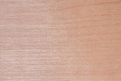 Tekstura naturalna brzozy dykta powierzchnia tarcica jest bez leczenia, mnóstwo mała układ scalony, włókno, i Zdjęcie Stock