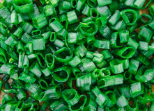 Tekstura od Rżniętej Zielonej cebuli, natury tło, Zdrowy Organicznie życie Zdjęcie Royalty Free