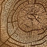 Tekstura piłujący drewno w brązie tonuje wektorowego wizerunek royalty ilustracja