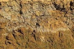 Tekstura pionowo plasterek Sandy ziemia Obraz Stock