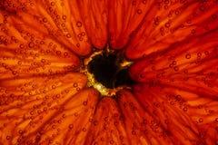 Tekstura pomarańcze pod wodą Zdjęcia Stock