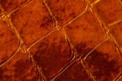 Tekstura prawdziwa patentowa skóra makro-, embossed pod skórą ciemnego brązu gada Dla nowożytnego wzoru, tapeta lub Zdjęcie Stock
