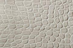 Tekstura prawdziwa patentowa skóra w górę, embossed pod skóra gadem Dla nowożytnego wzoru, tapety lub sztandaru, zdjęcia royalty free