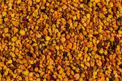 Tekstura pszczoły pollen dla tła zdjęcie royalty free