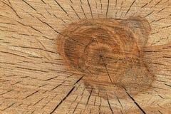Tekstura rżnięty suchy drewno obraz royalty free