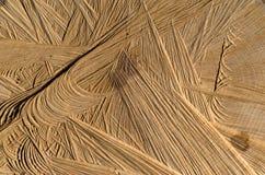 Tekstura rżnięty drzewo Zdjęcie Royalty Free