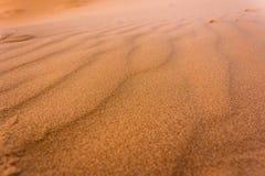 Tekstura Sahara Obrazy Stock
