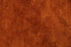 Tekstura skórą jest Obraz Stock
