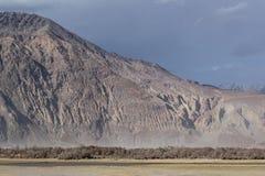 Tekstura skalista góra za suszarniczymi drzewami Zdjęcie Royalty Free