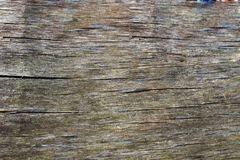 Tekstura stara dykty deska jako tło Obrazy Royalty Free