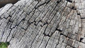 Tekstura stary drzewny fiszorek z pęknięciami Zdjęcie Royalty Free