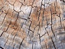 Tekstura stary odrewniały piłujący drzewny fiszorek zdjęcia royalty free