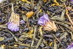 tekstura sucha czarna herbata z macierzanką kwitnie, ziołowy składnika napoju abstrakcji tło obrazy stock