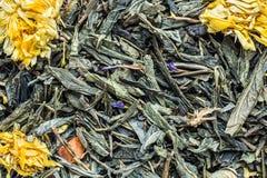Tekstura sucha zielona herbata z calendula kwitnie, zbliżenie składnika napoju abstrakcji ziołowy tło fotografia stock
