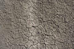 Tekstura sucha ziemia, tło Zdjęcia Royalty Free