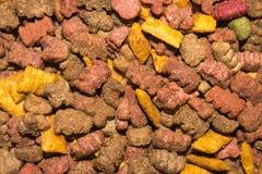 Tekstura suchy kota jedzenie zdjęcia stock