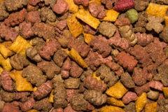 Tekstura suchy kota jedzenie zdjęcie stock