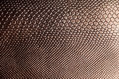 Tekstura sztuczna brown wąż skóra obrazy stock