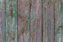 Tekstura, tło, stare drewniane pionowo deski zdjęcia royalty free