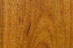 Tekstura uwarstwiający drewniany chipboard pod drzewem Obrazy Stock