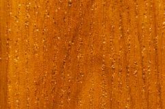 Tekstura uwarstwiający drewniany chipboard pod drzewem Obraz Royalty Free
