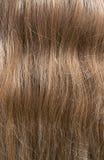 Tekstura włosy obrazy stock