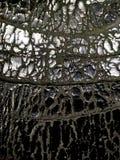 tekstura w naturalnym wzorze, kamienna podłoga Dekoracyjny, szarość fotografia stock