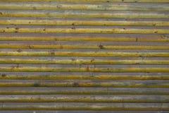tekstura wodden Zdjęcie Stock