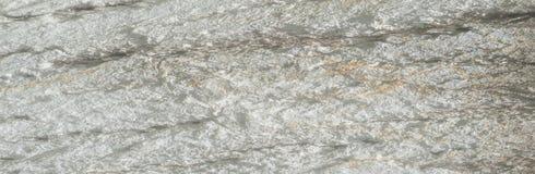 Tekstura, wzór Barkentyna drzewo natężenie swój brzmienia relati zdjęcia stock