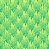 Tekstura z zielonymi falistymi liśćmi Pionowo folaige i warkocze kolorowych deseniowych planowanymi różnych możliwych wektora ilustracji