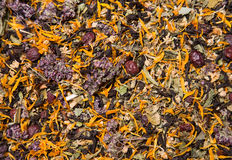 Tekstura zdrowa ziołowa herbata Zdjęcia Royalty Free