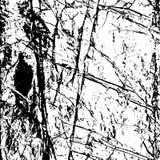 Tekstura zmięty paper-2 ilustracja wektor