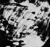 Tekstury akwareli czerń na białym, monochrom royalty ilustracja