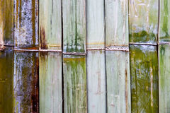 tekstury bambusowa ściana Obrazy Royalty Free